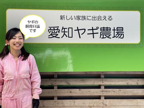 【愛知ヤギ農場】ペットヤギ専門の牧場です。ペットヤギの販売、貸出、展示、訓練、保管、譲受と教育(動物介在教育).png